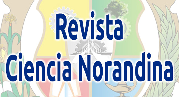 revistanorandina